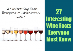 27 Interesting Wine Facts Everyone Must Know in 2017