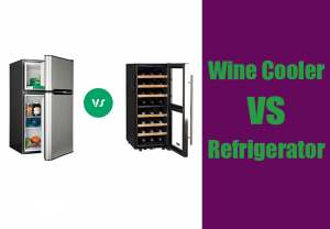 Wine Cooler vs Refrigerator: Know the Difference